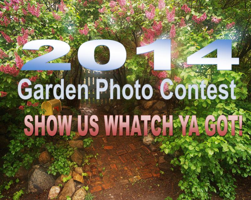 2014 Garden Contest