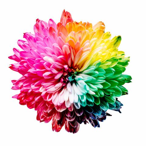 Catalog Marketing – Choosing the Right Colors